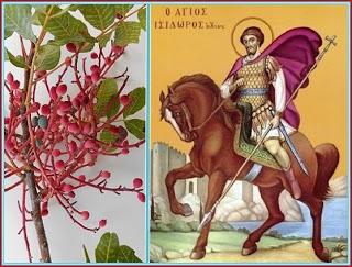 Ο Άγιος Ισίδωρος και η τιμή του στη μυροβόλο Χίο | e-mesara